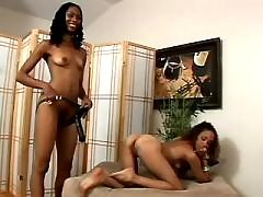 Pretty black lesbians with killer bodies